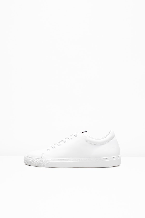 Fred Sneakers