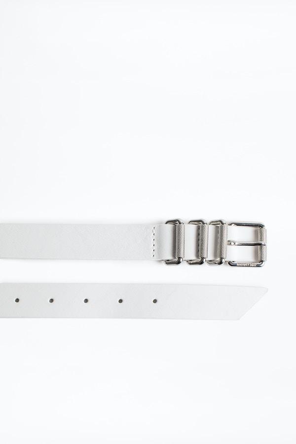 Titanium belt
