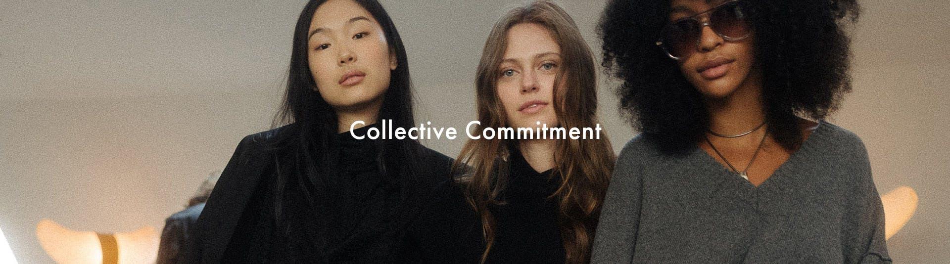 Voltaire program - collective commitment top-banner desktop