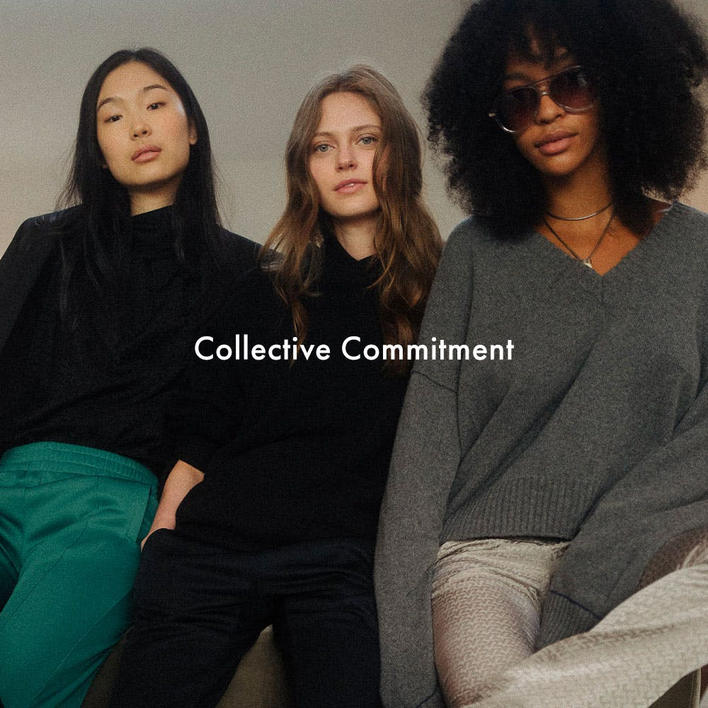 Voltaire program - collective commitment top-banner mobile version